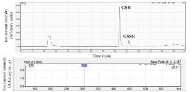 Redukált és oxidált glutation (GSH és GSSG) kimutatása (HPLC-MS) dohánymozaik vírussal (TMV) fertőzött dohány leveleiből