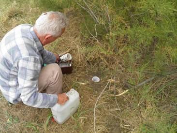 Talajcsapdás rovargyűjtés
